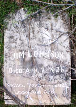 JOHNSON, JIM - Lafayette County, Arkansas | JIM JOHNSON - Arkansas Gravestone Photos