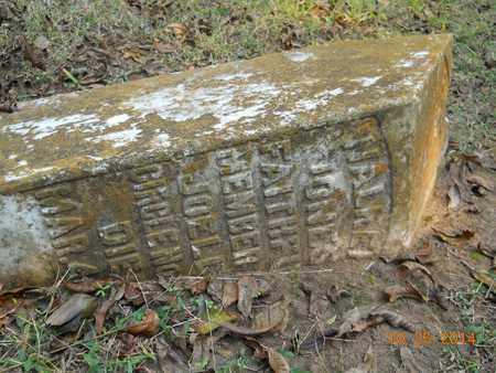 JONES, WALKER - Lafayette County, Arkansas | WALKER JONES - Arkansas Gravestone Photos