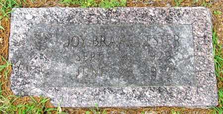 LESTER, JOY BRAME - Lafayette County, Arkansas | JOY BRAME LESTER - Arkansas Gravestone Photos