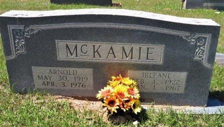 MCKAMIE, ARNOLD - Lafayette County, Arkansas | ARNOLD MCKAMIE - Arkansas Gravestone Photos