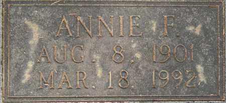 MCKAMIE, ANNIE F - Lafayette County, Arkansas | ANNIE F MCKAMIE - Arkansas Gravestone Photos