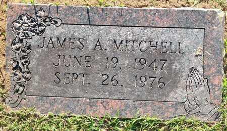 MITCHELL, JAMES A - Lafayette County, Arkansas | JAMES A MITCHELL - Arkansas Gravestone Photos