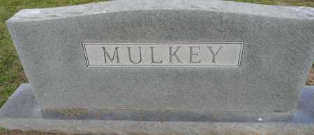MULKEY FAMILY STONE,  - Lafayette County, Arkansas    MULKEY FAMILY STONE - Arkansas Gravestone Photos