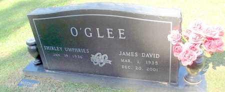 O'GLEE, JAMES DAVID - Lafayette County, Arkansas | JAMES DAVID O'GLEE - Arkansas Gravestone Photos