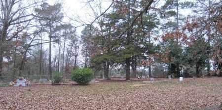 *OVERVIEW, . - Lafayette County, Arkansas | . *OVERVIEW - Arkansas Gravestone Photos