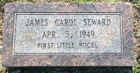 SEWARD, JAMES CAROL - Lafayette County, Arkansas | JAMES CAROL SEWARD - Arkansas Gravestone Photos