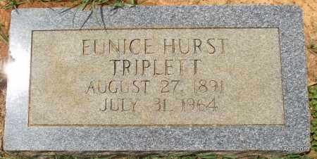 TRIPLETT, EUNICE - Lafayette County, Arkansas | EUNICE TRIPLETT - Arkansas Gravestone Photos