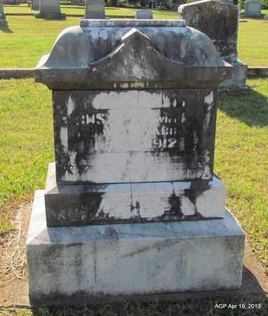 WARREN, ROSA MAY - Lafayette County, Arkansas | ROSA MAY WARREN - Arkansas Gravestone Photos