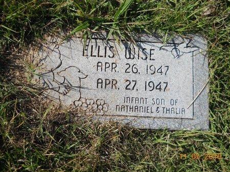 WISE, ELLIS - Lafayette County, Arkansas   ELLIS WISE - Arkansas Gravestone Photos