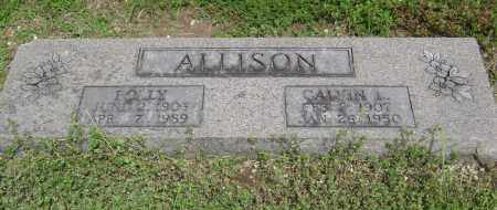 "ALLISON, BLANCHE ""POLLY"" - Lawrence County, Arkansas 