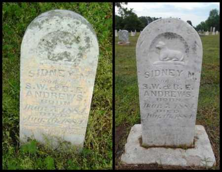 ANDREWS, SIDNEY M - Lawrence County, Arkansas | SIDNEY M ANDREWS - Arkansas Gravestone Photos