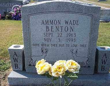 BENTON, AMMON WADE - Lawrence County, Arkansas | AMMON WADE BENTON - Arkansas Gravestone Photos