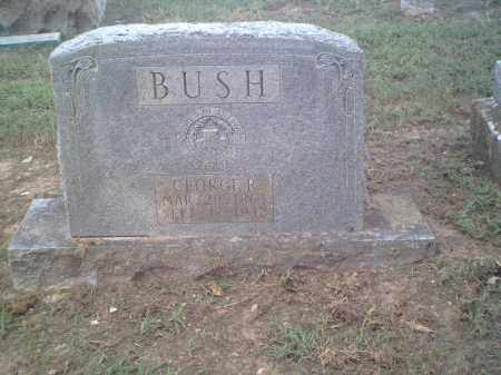 BUSH, GEORGE ROBERT - Lawrence County, Arkansas | GEORGE ROBERT BUSH - Arkansas Gravestone Photos