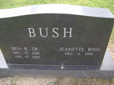 BUSH, NAOMI JEANETTE - Lawrence County, Arkansas | NAOMI JEANETTE BUSH - Arkansas Gravestone Photos