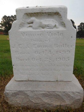 BUTLER, VINNIE VIOLA - Lawrence County, Arkansas | VINNIE VIOLA BUTLER - Arkansas Gravestone Photos