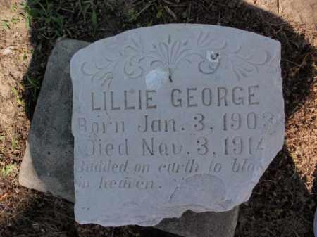 GEORGE, LILLIE - Lawrence County, Arkansas | LILLIE GEORGE - Arkansas Gravestone Photos