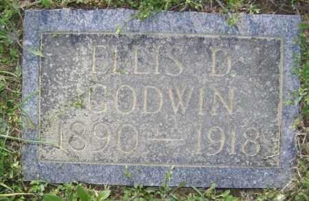 GODWIN, ELLIS DAVID - Lawrence County, Arkansas | ELLIS DAVID GODWIN - Arkansas Gravestone Photos