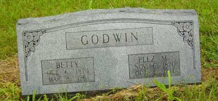 SHIPLEY GODWIN, MARY ELIZABETH - Lawrence County, Arkansas | MARY ELIZABETH SHIPLEY GODWIN - Arkansas Gravestone Photos