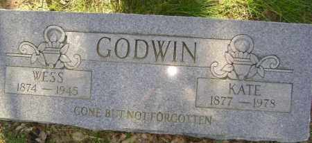 "GODWIN, JOHN WESLEY ""WESS"" - Lawrence County, Arkansas | JOHN WESLEY ""WESS"" GODWIN - Arkansas Gravestone Photos"