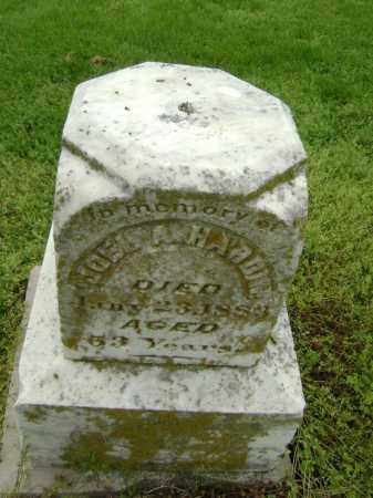 HARDIN, JOEL A. - Lawrence County, Arkansas | JOEL A. HARDIN - Arkansas Gravestone Photos