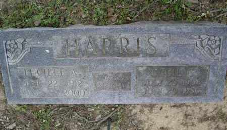 ALLEN, LUCILLE A CRIDER HARRIS - Lawrence County, Arkansas | LUCILLE A CRIDER HARRIS ALLEN - Arkansas Gravestone Photos
