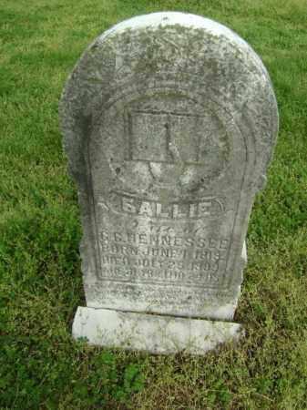 HENNESSEE, SALLIE - Lawrence County, Arkansas | SALLIE HENNESSEE - Arkansas Gravestone Photos