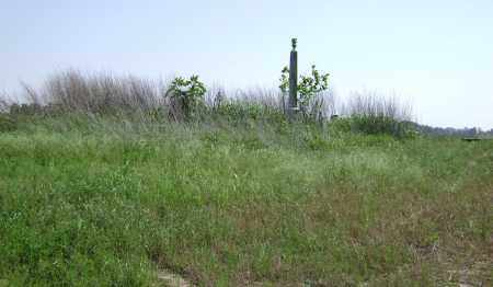 *OVERVIEW,  - Lawrence County, Arkansas |  *OVERVIEW - Arkansas Gravestone Photos