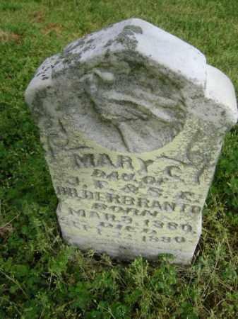 HILDERBRANDT, MARY C. - Lawrence County, Arkansas | MARY C. HILDERBRANDT - Arkansas Gravestone Photos
