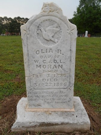 MORAN, OLIA R - Lawrence County, Arkansas | OLIA R MORAN - Arkansas Gravestone Photos
