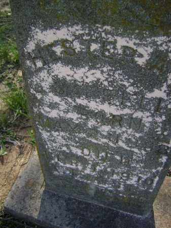 SAFFELL, HESTER A. - Lawrence County, Arkansas | HESTER A. SAFFELL - Arkansas Gravestone Photos