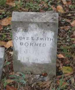 SMITH, ODIS L. - Lawrence County, Arkansas   ODIS L. SMITH - Arkansas Gravestone Photos