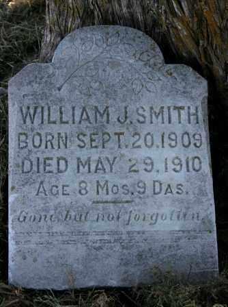 SMITH, WILLIAM J. - Lawrence County, Arkansas | WILLIAM J. SMITH - Arkansas Gravestone Photos
