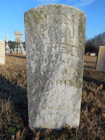 WARD, MINNIE E - Lawrence County, Arkansas | MINNIE E WARD - Arkansas Gravestone Photos