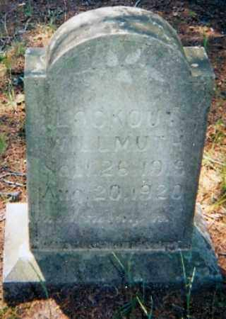 WILLMUTH, LOOKOUT - Lawrence County, Arkansas   LOOKOUT WILLMUTH - Arkansas Gravestone Photos