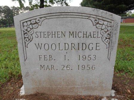 WOOLDRIDGE, STEPHEN MICHAEL - Lawrence County, Arkansas | STEPHEN MICHAEL WOOLDRIDGE - Arkansas Gravestone Photos