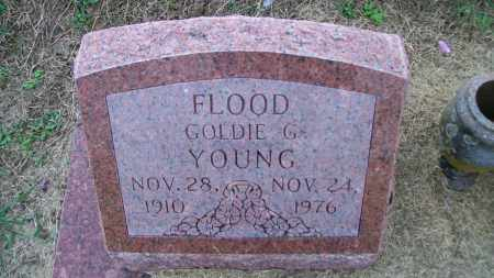 YOUNG, GOLDIE G - Lawrence County, Arkansas | GOLDIE G YOUNG - Arkansas Gravestone Photos