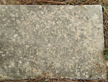 CUNNINGHAM CAMPBELL, ROSA LEE - Lee County, Arkansas | ROSA LEE CUNNINGHAM CAMPBELL - Arkansas Gravestone Photos