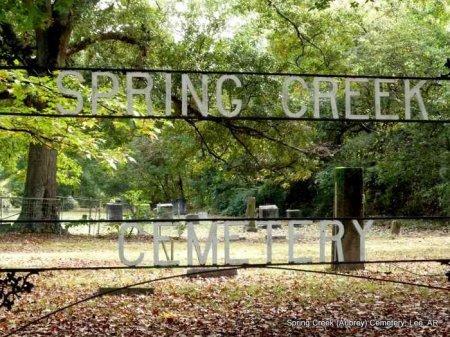 *CEMETERY SIGN, . - Lee County, Arkansas | . *CEMETERY SIGN - Arkansas Gravestone Photos