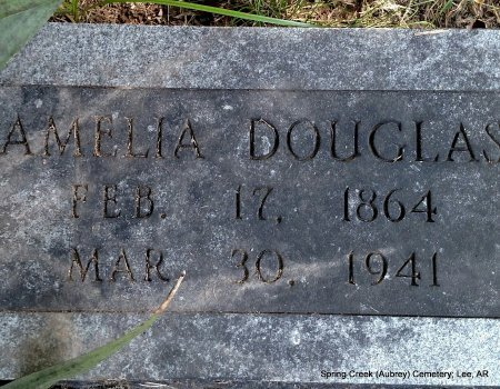 MARTIN DOUGLAS, AMELIA INEZ - Lee County, Arkansas | AMELIA INEZ MARTIN DOUGLAS - Arkansas Gravestone Photos