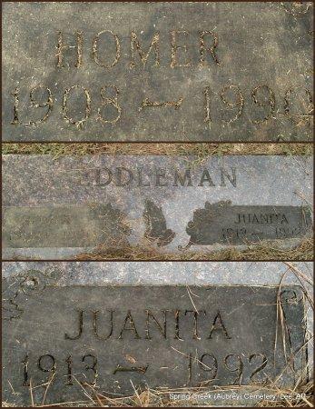 EDDLEMAN, HOMER - Lee County, Arkansas | HOMER EDDLEMAN - Arkansas Gravestone Photos
