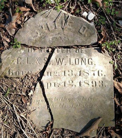 LONG, LILLIE O - Lee County, Arkansas   LILLIE O LONG - Arkansas Gravestone Photos