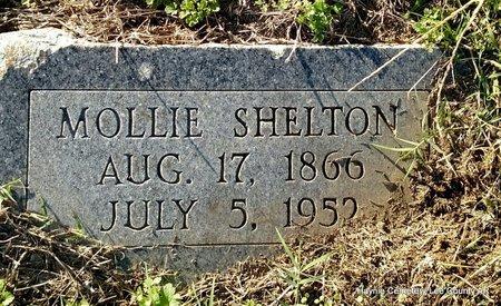 SHELTON, MOLLIE - Lee County, Arkansas | MOLLIE SHELTON - Arkansas Gravestone Photos