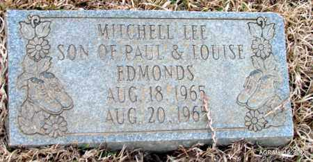EDMONDS, MITCHELL LEE - Lincoln County, Arkansas | MITCHELL LEE EDMONDS - Arkansas Gravestone Photos