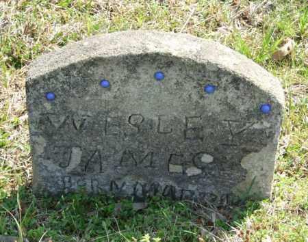 JAMES, WESLEY - Lincoln County, Arkansas | WESLEY JAMES - Arkansas Gravestone Photos