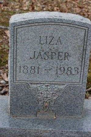 JASPER, LIZA - Lincoln County, Arkansas | LIZA JASPER - Arkansas Gravestone Photos