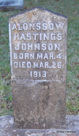 JOHNSON, ALONSSOW HASTINGS - Lincoln County, Arkansas | ALONSSOW HASTINGS JOHNSON - Arkansas Gravestone Photos
