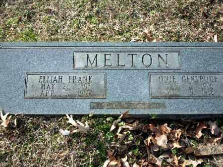 MELTON, ELIJAH FRANK - Lincoln County, Arkansas | ELIJAH FRANK MELTON - Arkansas Gravestone Photos