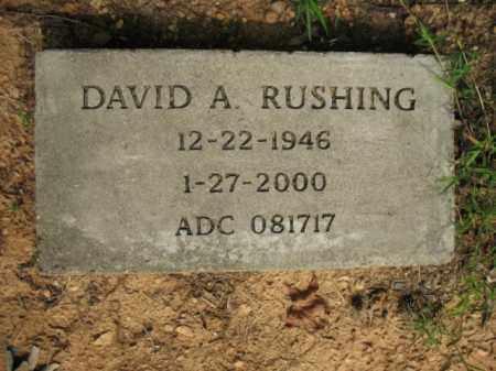 RUSHING, DAVID A. - Lincoln County, Arkansas | DAVID A. RUSHING - Arkansas Gravestone Photos