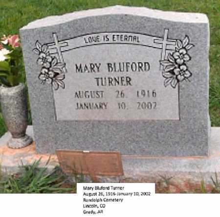 BLUFORD TURNER, MARY - Lincoln County, Arkansas | MARY BLUFORD TURNER - Arkansas Gravestone Photos