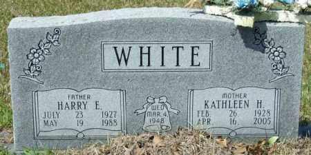 WHITE, HARRY E - Lincoln County, Arkansas | HARRY E WHITE - Arkansas Gravestone Photos